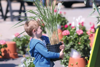 little boy with big plant at oakland county farmers market