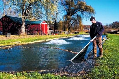Owen Ballow at trout farm
