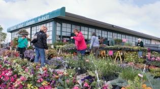 oakland county farmers market flower offerings