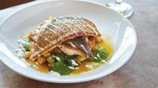indian brook trout and gnocchi